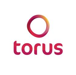TORUS2