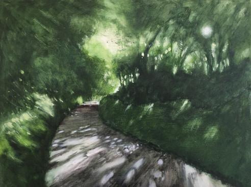'Dappled Devon lane - summer' SOLD