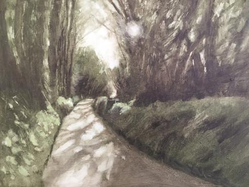 'Dappled Devon lane' SOLD