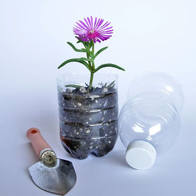 plastic bottle planter.jpg
