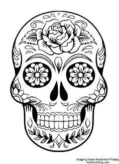 sugar skull web.jpg