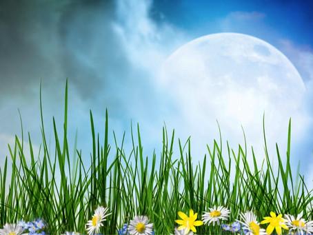Spring Full Moon Ritual
