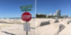 Erlich Miami wix.jpg
