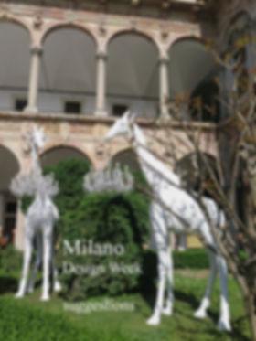 Milano cover.jpg