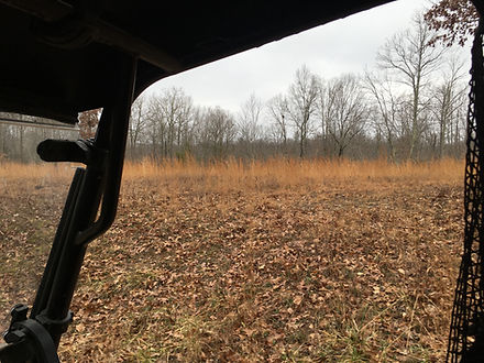Deer hunting food plot on a tract for sale.