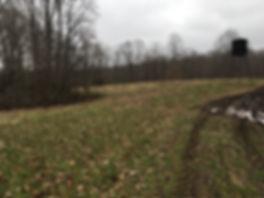 Elevated deer hunting blind.