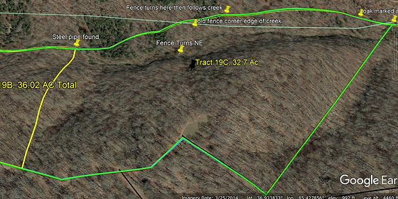 Tract 19c, 33 acres of land for sale near Columbia, KY.