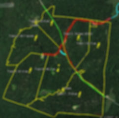A recent aerial photo of Kentucky deer hunting land for sale with seller financing.