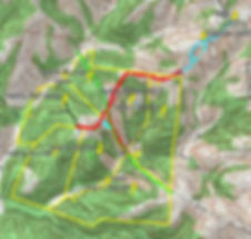 Topo Map of 350 acres of hunting land for sale in tracts.