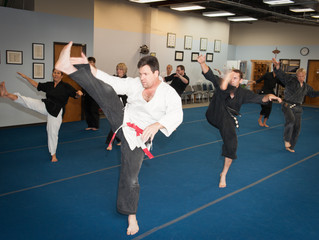 Practicing the Monkey Tiger Fist with Master Schaefer