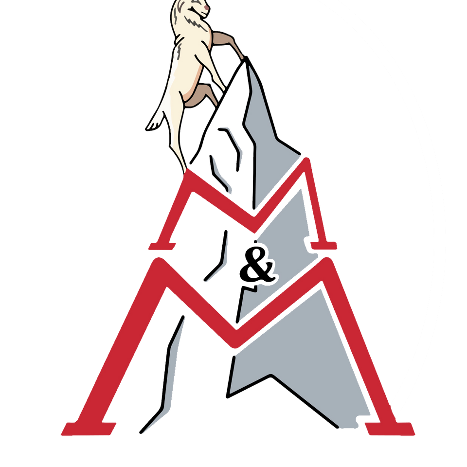 Logo for career counseling student service at Worcester Polytechnic Institute