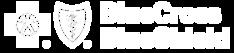 b412691b-bcbs-logo_06i01h06i01h000000.pn