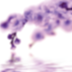Website cherry blossom new.png