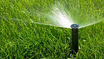 Crown Irrigation | Sprinklers Systems | Houston TX