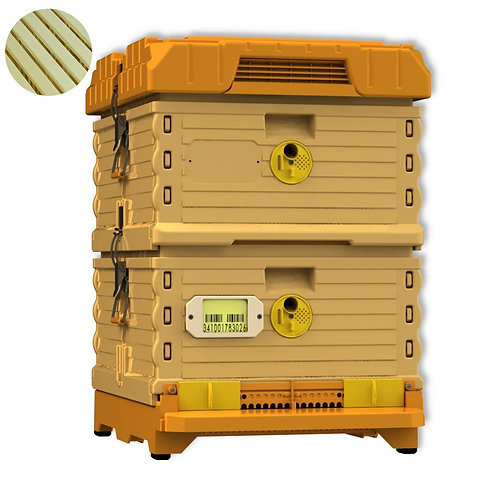 Tan Apimaye Ergo Hive