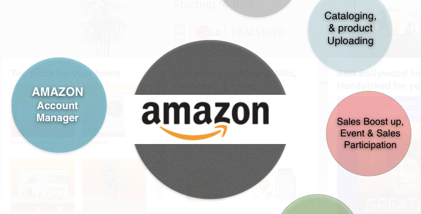 Amazon.in Account Manager