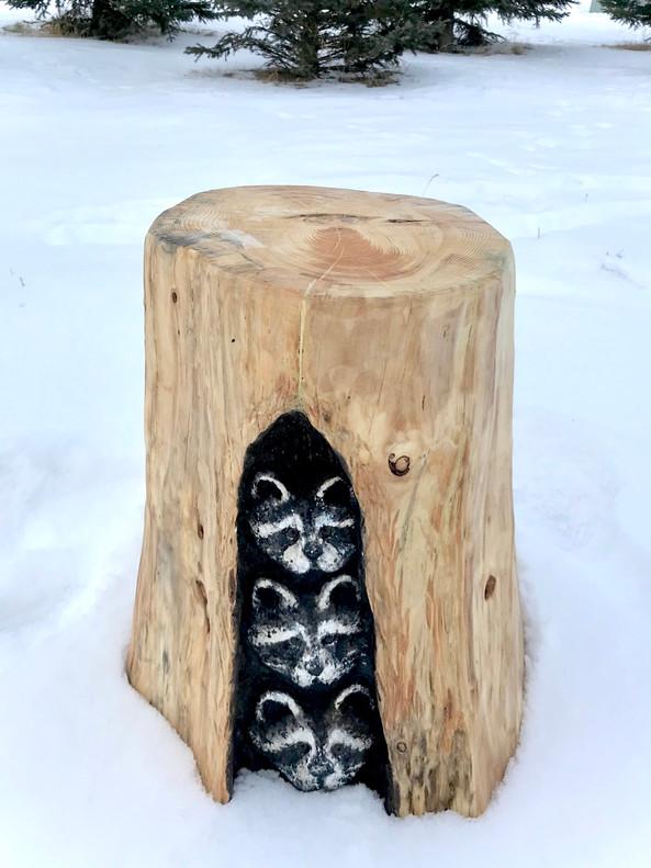 Raccoons in Stump Stool  Log Sculpture - Michelle Thevenot Artwork - Saskatchewan Chainsaw Carver