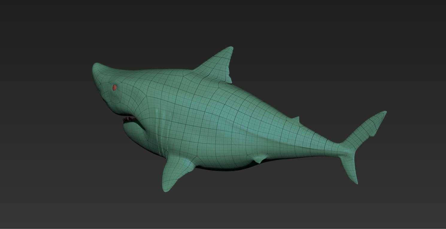 Shark_WireFrame02