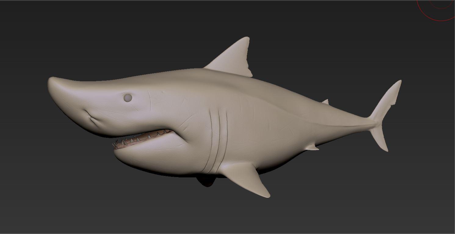 Shark_Gray01