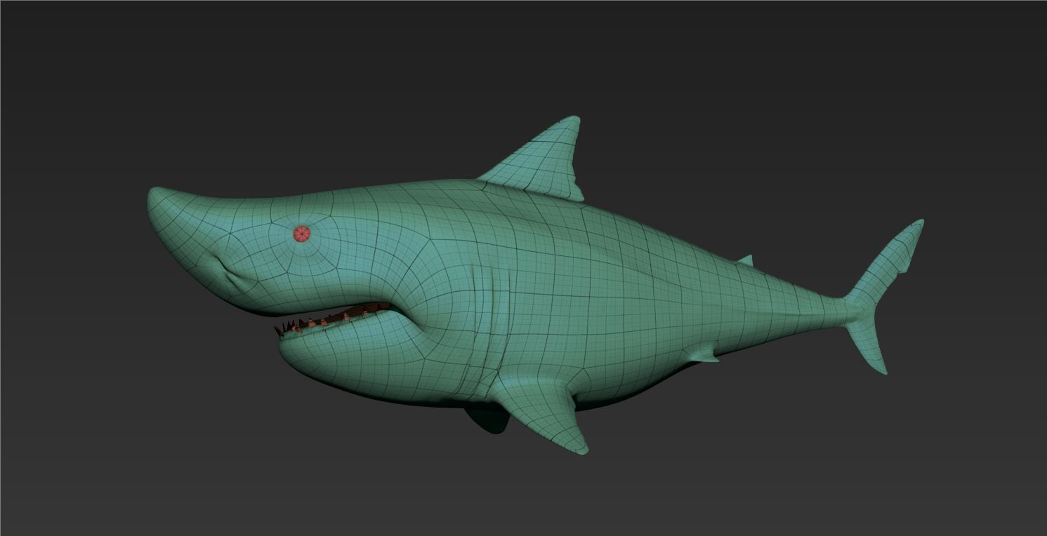 Shark_WireFrame01