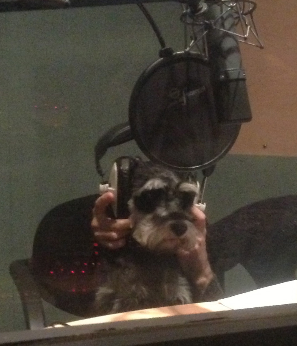 Me fixing some bodged voiceover. You're welcome
