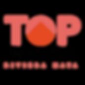 Logotipo Top Properties Cuadrado.png