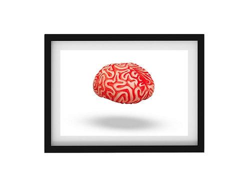 Estampa digital para impressao - Tema Cérebro