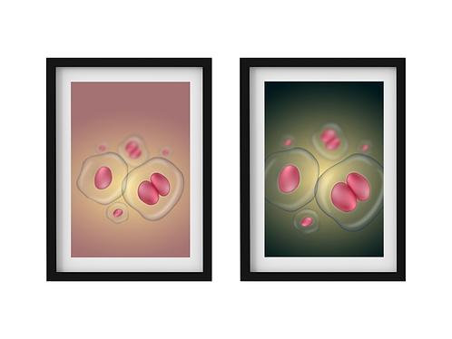 Poster digital para quadro - Célula