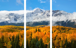 Mountain Veil Triptych