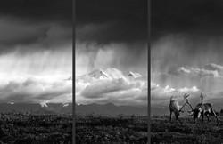Tundra Thunder B&W Triptych