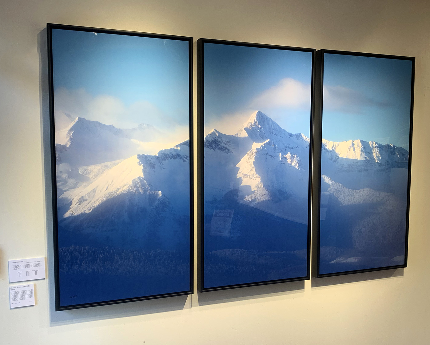 25x50 Panel Triptych, Metal Print, Floater Frame