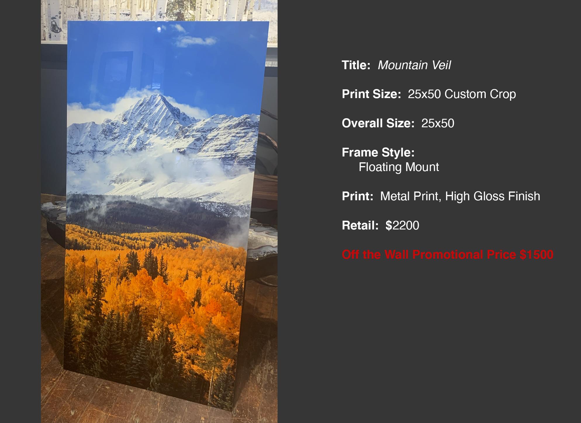 Mountain Veil 25x50 Panel