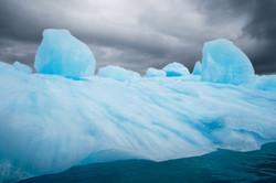Arctic Sentries