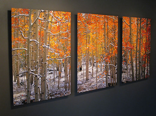 Illumination 30x40 Triptych Watercolor F