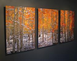 30x40 Panels Metal Print