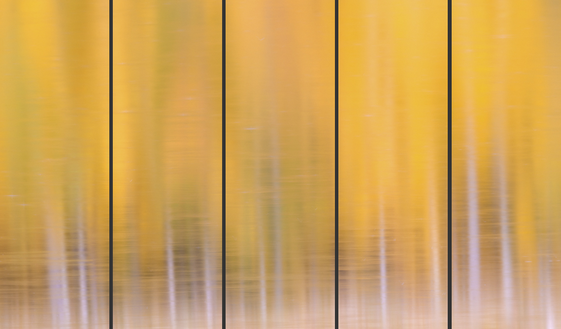Autumn Reflections 5 panel (5-10x30, 15x45, 20x60)