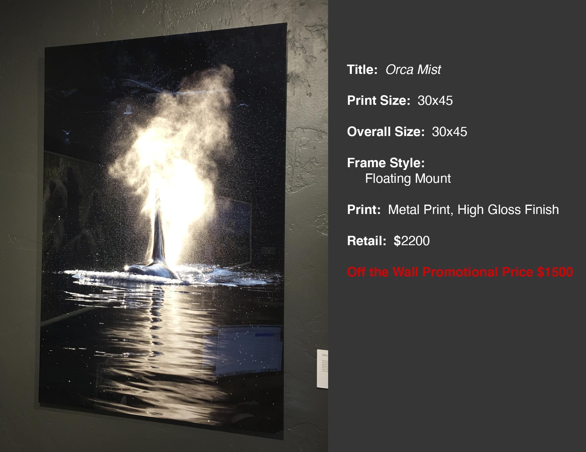 Orca Mist 30x45
