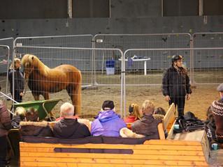 Gloi Islandshestforening inviterer alle hesteinteresserte til temahelg med Bjørn Kjersem 18. - 19. m