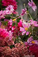 Pink Flower Montage_26 x 38_2.jpeg