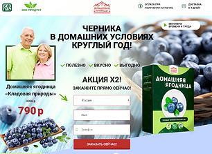 Домашняя ягодница.png