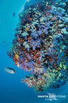 Page_5_SEIFERT.Maldives_N810300-1_copy.jpg