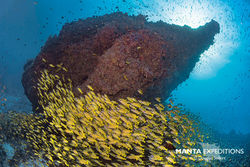 SEIFERT.Maldives_N813847-1_copy.jpg