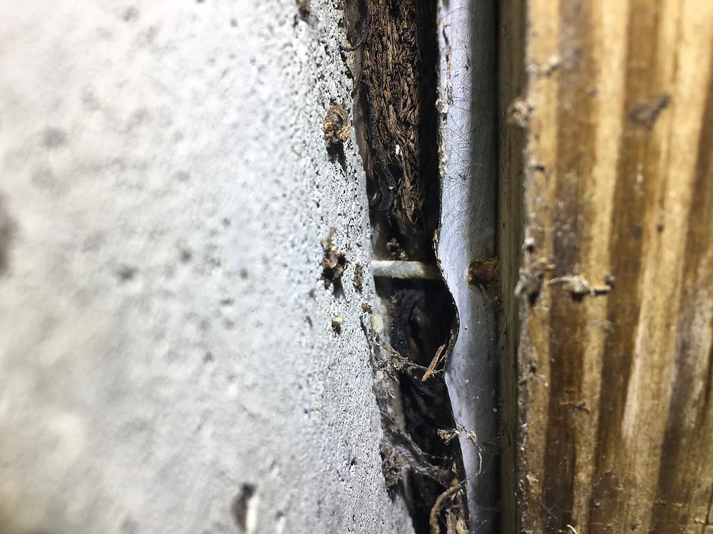 Sheathing Rot Behind Ledger Board