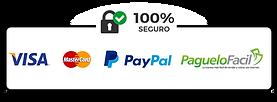 pago-seguro-panama 2.png