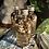Thumbnail: FULL MOON RITUAL OIL