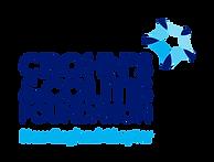ccNECT logo ai.png