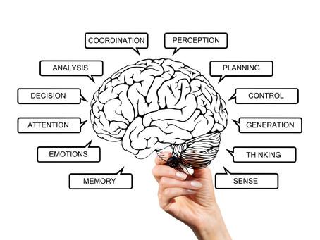 痛みと脳の関係