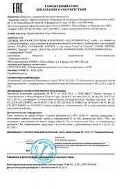 декларация тр тс 017.jpg