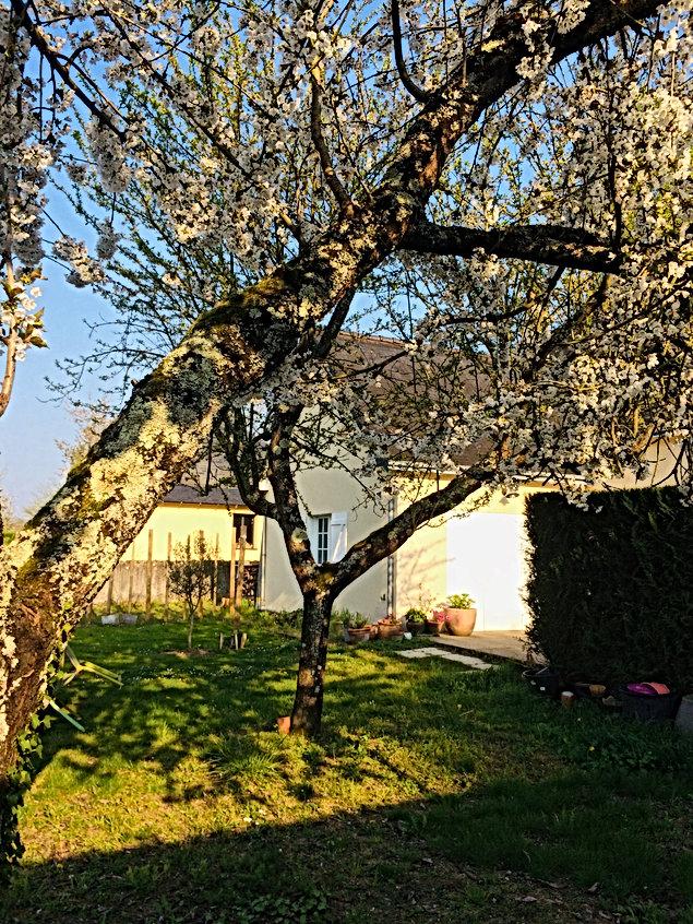 Le jardin clos de 1000m² aux portes d'Am