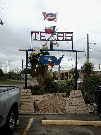 texas flag  texas sign